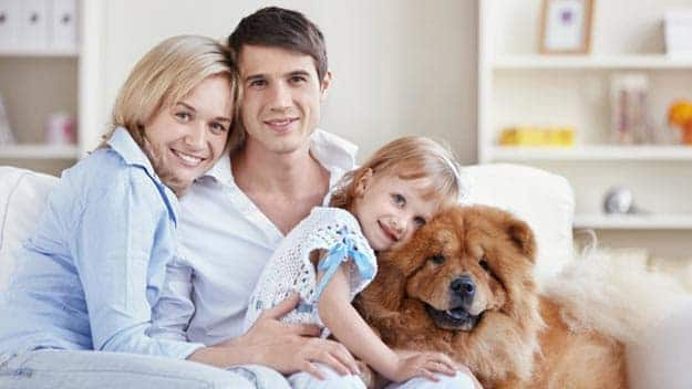 Wills & Trusts dog-young-family Direct Wills Kensal Town